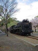 Sakura2010g
